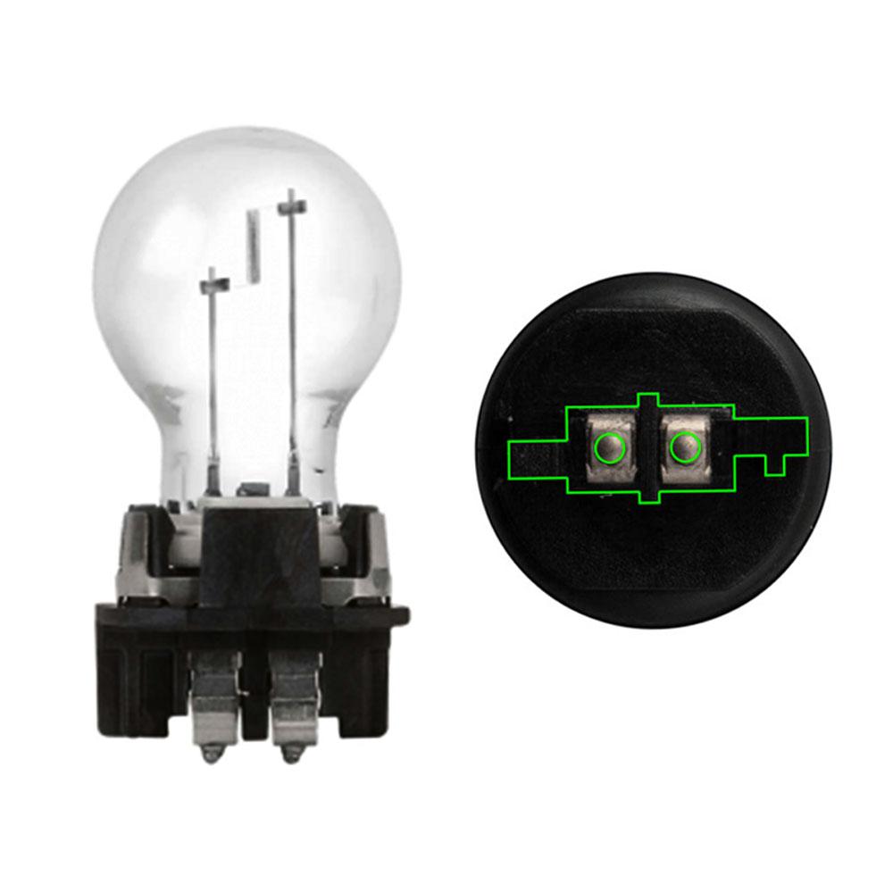 PWY24W stock bulb